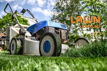 Lawn.com.au Cover Photo