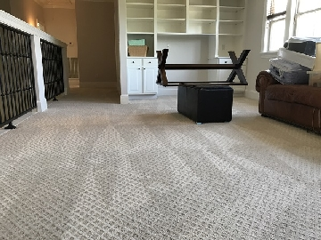 Sparky Carpet Cleaning