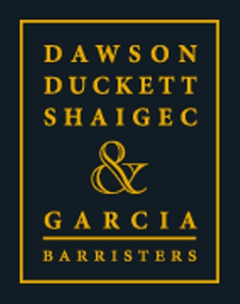 DDSG Criminal Law Logo