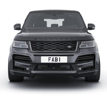 FAB Number 1 Plates