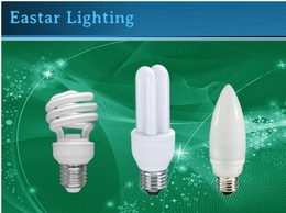 http://www.eslightbulbs.com website