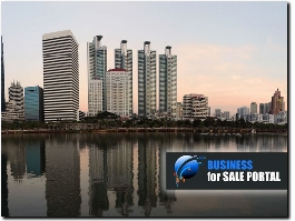http://businessforsaleportal.com/ website