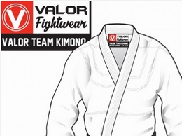 https://valorfightwear.com/ website