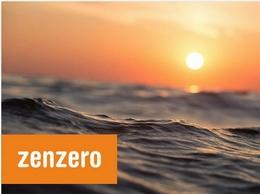 https://www.zenzero.co.uk/ website