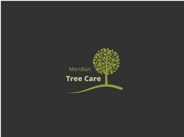 https://www.treecaremeridian.com/ website