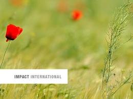 https://www.impactinternational.com website