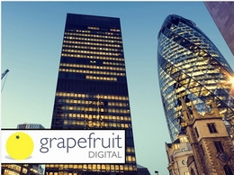 https://grapefruitseo.co.uk/ website