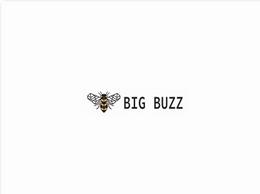https://big-buzz.co.uk/ website