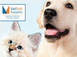 https://www.vetlabsupplies.co.uk/ website