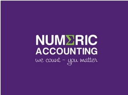 https://www.numericaccounting.co.uk/ website
