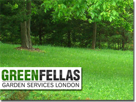 http://www.fenceinstallersnorthlondon.co.uk/landscape-gardening-london/gardenfencingnorthlondon website