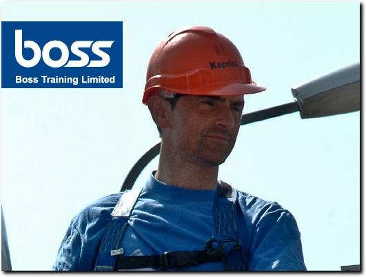http://www.bosstraining.co.uk/ website