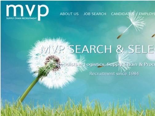 http://www.mvp-search.com/ website